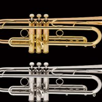 img_trumpet[1]